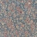 Bala Flower Granite - India